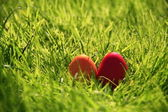 Red Easter eggs — Stockfoto