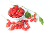 Goji berries (Lycium barbarum) — Stock Photo