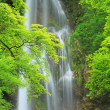 Stock Photo: Waterfall of Bad Urach