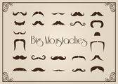 Mustaches collection — Stock Vector