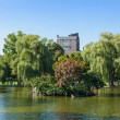 View of the Common park lake in Boston — Stock Photo #12663123