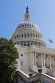 US Capitol Building in Washington DC — Stock Photo