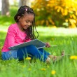 Outdoor portrait of a cute young black little girl reading a boo — Stock Photo #25087207