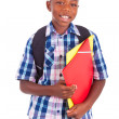African American school boy, holding folders - Black people — Stock Photo #30984125