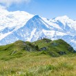 Stock Photo: A beautiful view of the mont blanc in the french alps