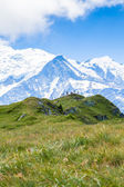 A beautiful view of the mont blanc in the french alps — Stockfoto
