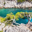 Calanques near Marseille and Cassis in south of France.jpg — Stock Photo