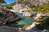 Calanques near Marseille and Cassis in south of France — Stock Photo