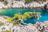 Calanques near Marseille and Cassis in south of France — Stockfoto