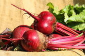 Table beet — Stock Photo