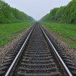 Railway in surroundings a green-leaf — Stock Photo