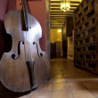 Contrabass — Stock Photo #40436667