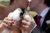 Nygifta — Stockfoto