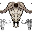 Buffalo skull isolated on white — Stock Vector