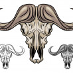 Buffalo skull isolated on white — Stock Vector #16342605