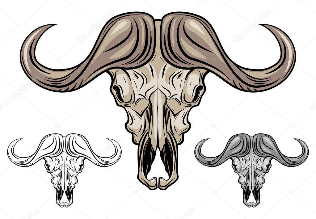 水牛头骨被隔绝在白,矢量图 — 矢量图片作者 pepelaz