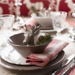 Christmas Place Setting — Stock Photo #14348087