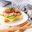 Tuna Fish Salad Sandwich — Stock Photo #24437913