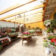 Stock Photo: Flower Shop Interior