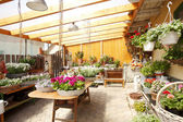 Flower Shop Interior — Stock Photo