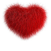Heart from red fur — Stock Photo