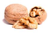 Изолированные грецкие орехи — Стоковое фото