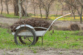 Trolley with tree branches — Stock Photo