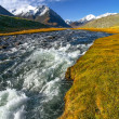 Mountain river grass glacier — Stock Photo
