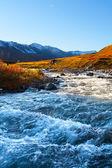 Geleira de rio — Foto Stock