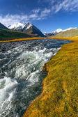 Mountain river grass glacier — Stock Photo