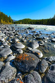 River, wood, boulder — Stock Photo