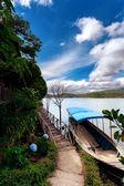 Jungle of Vietnam — Stock Photo