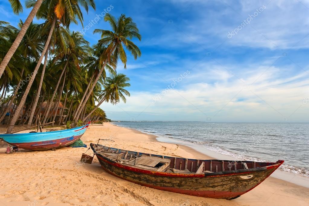 пальма берег лодка