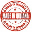 Made in Indiana — Stock Vector