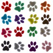 Colored Paws — Stock Vector