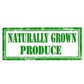 Naturalmente crecido sello de producto — Vector de stock