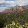 Sedona Landscape — Stock Photo