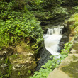watkins glen gorge — Stock Photo