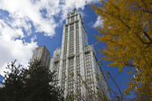 NEW YORK CITY, November 19, 2013: Woolworth Building, New York City — Stock Photo