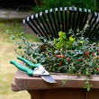 Garden Waste Recycling II - Stock Photo