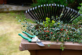 Garden Waste Recycling II — Stock Photo