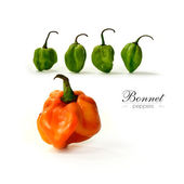 Bonnet Peppers — Stock Photo