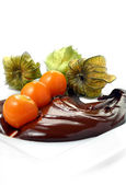 Physalis And Chocolate — Stock Photo