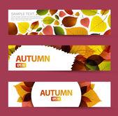 Fresh natural fall vector horizontal banners — Stock Vector