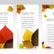 Fresh natural autumn vertical banners with leafs — Stock Vector #6126797