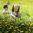Two little girls playing in the meadow with dandelions — Stock Photo