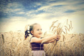 Cute happy baby playing on wheat field — Stock Photo