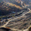 Stock Photo: Remains of forest fire