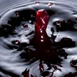 Wine droplet — Stockfoto