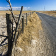 Stock Photo: Long asphalt road on vast dry land